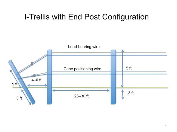 Thumbnail image for Trellis Systems